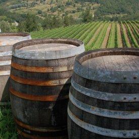 Siena y Norte de la Toscana