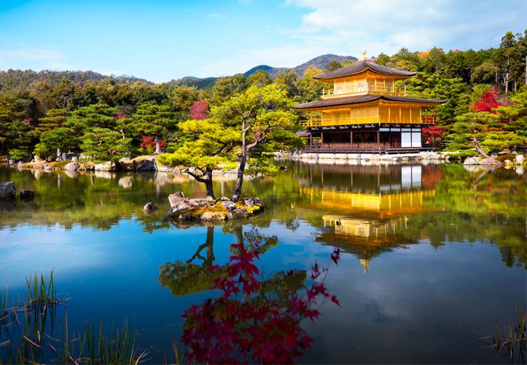 Japón por libre en 14 días