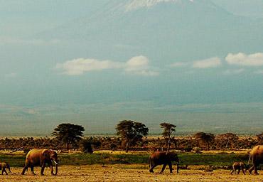 Kenia por libre en 9 días